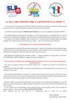 Carcassonne tire la sonnette d alarme