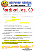 Perpignan feu de cellule au cd