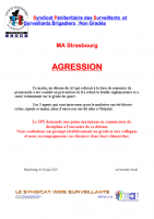Strasbourg agression